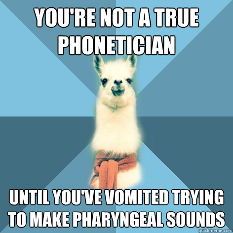 You're not a true phonetician until you've vomited trying to make pharyngeal sounds  Linguist Llama