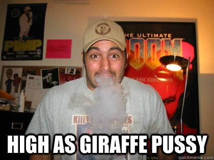 High as giraffe pussy