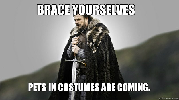 Brace yourselves Pets in Costumes are coming.  Ned stark winter is coming