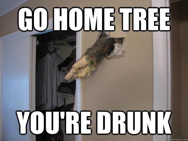 Go home tree  You're Drunk - Go home tree  You're Drunk  Misc
