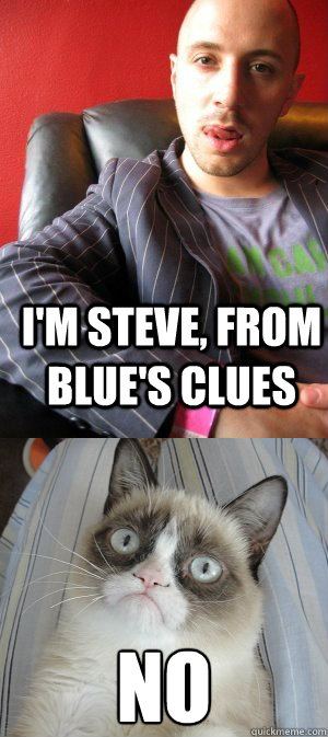 i u0026 39 m steve  from blue u0026 39 s clues no