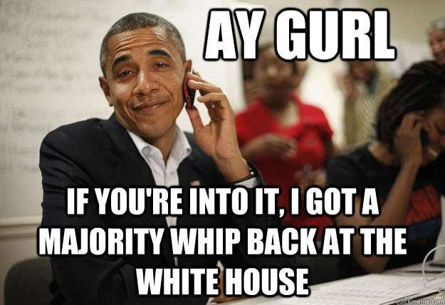Ay gurl if you're into it, I got a majority whip back at the white house - Ay gurl if you're into it, I got a majority whip back at the white house  Misc