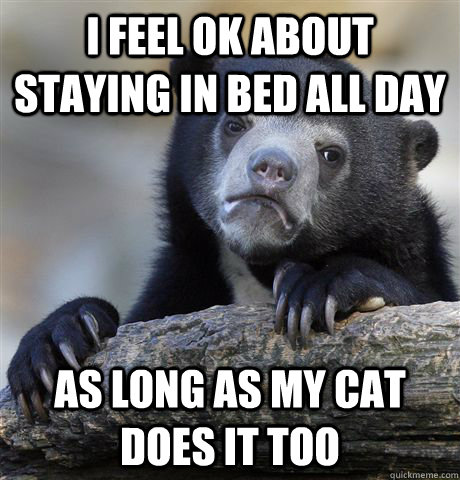I feel ok about staying in bed all day as long as my cat does it too - I feel ok about staying in bed all day as long as my cat does it too  Confession Bear