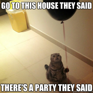 Go to this house they said There's a party they said - Go to this house they said There's a party they said  Sad Birthday Cat