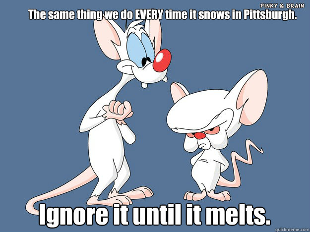 The same thing we do EVERY time it snows in Pittsburgh. Ignore it until it melts. - The same thing we do EVERY time it snows in Pittsburgh. Ignore it until it melts.  Pinky and the Brain