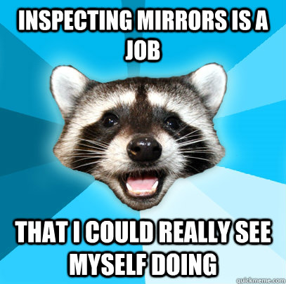 INSPECTING MIRRORS IS A JOB THAT I COULD REALLY SEE MYSELF DOING - INSPECTING MIRRORS IS A JOB THAT I COULD REALLY SEE MYSELF DOING  Lame Pun Coon
