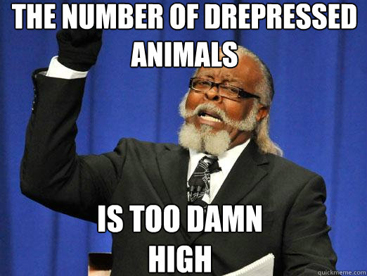 The number of drepressed animals Is too damn high - The number of drepressed animals Is too damn high  the rent is to dam high