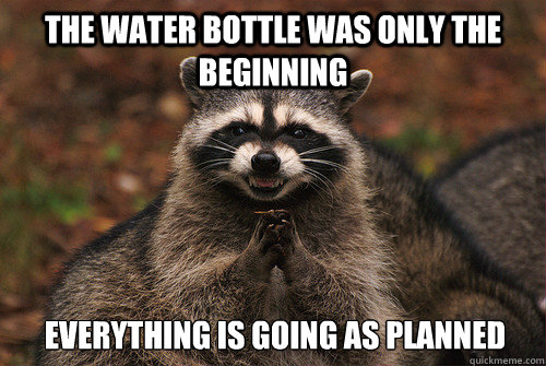 The water bottle was only the beginning Everything is going as planned - The water bottle was only the beginning Everything is going as planned  Insidious Racoon 2
