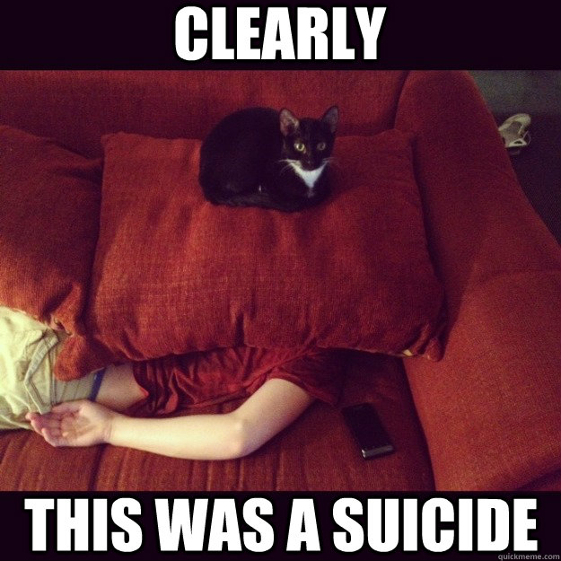 Clearly This was a suicide - Clearly This was a suicide  jealous cat