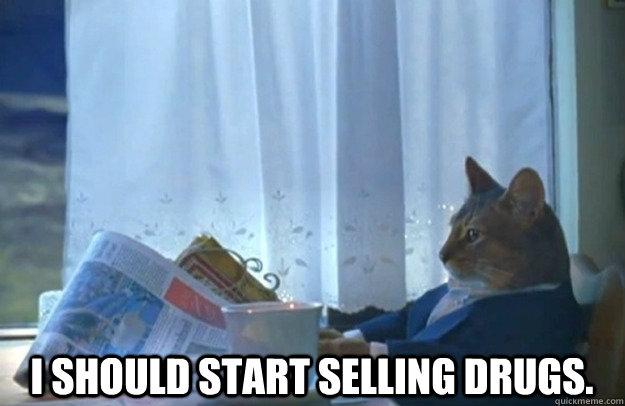 I should start selling drugs. -  I should start selling drugs.  Sophisticated Cat