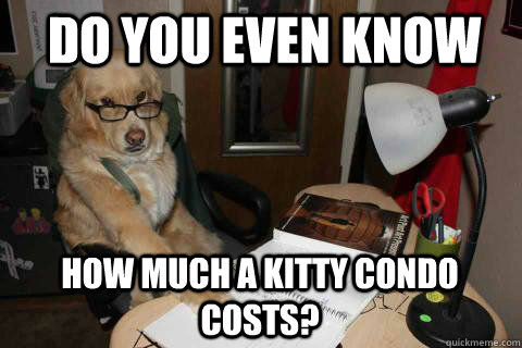 Do you even know  how much a kitty condo costs? - Do you even know  how much a kitty condo costs?  Financial Advice Dog