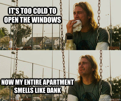 it's too cold to open the windows now my entire apartment smells like dank - it's too cold to open the windows now my entire apartment smells like dank  First World Stoner Problems