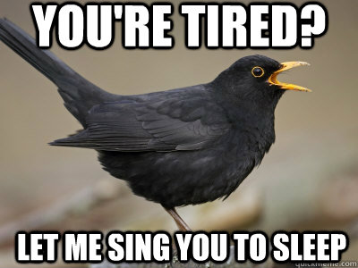 You're tired? Let me sing you to sleep