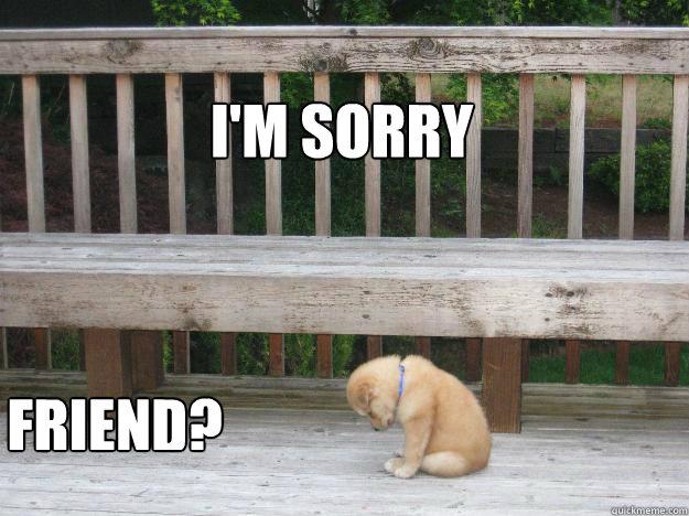 I'm sorry Friend? - Sorry - quickmeme