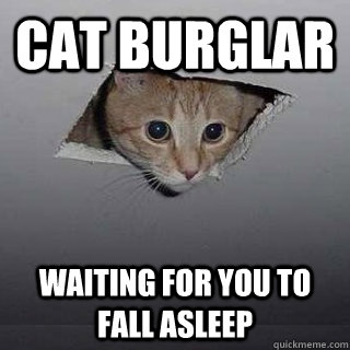 Cat burglar waiting for you to fall asleep