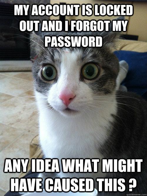 Www facebook com help forgot password