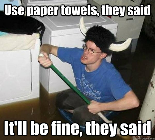 Use paper towels, they said It'll be fine, they said - Use paper towels, they said It'll be fine, they said  They said