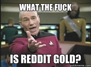 What the fuck is reddit gold?