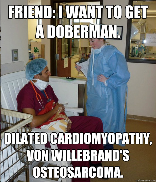 Friend: I want to get a Doberman. Dilated cardiomyopathy, Von Willebrand's osteosarcoma. - Friend: I want to get a Doberman. Dilated cardiomyopathy, Von Willebrand's osteosarcoma.  Overworked Veterinary Student