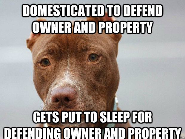 Domesticated to defend owner and property Gets put to sleep for defending owner and property - Domesticated to defend owner and property Gets put to sleep for defending owner and property  Misc