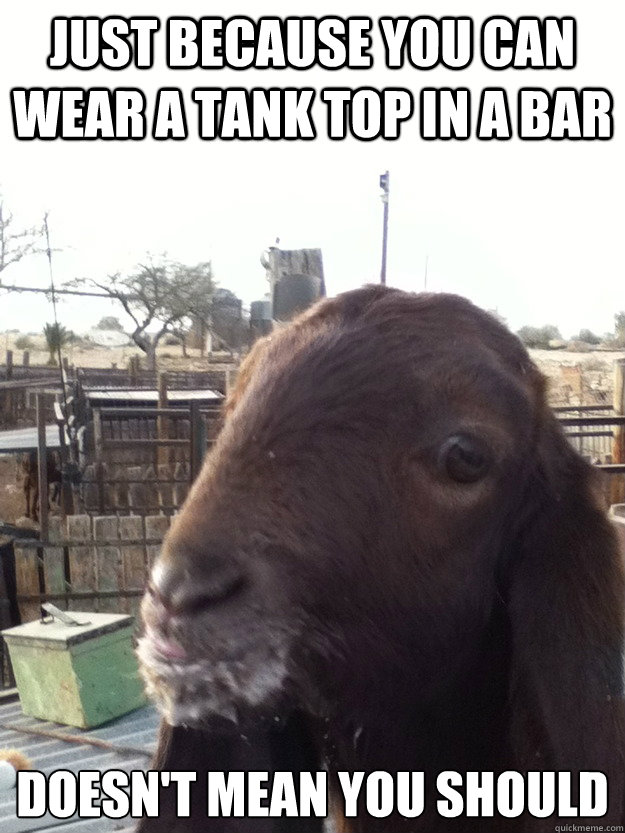 Just because you can wear a tank top in a bar Doesn't mean you should - Just because you can wear a tank top in a bar Doesn't mean you should  Rational Goat