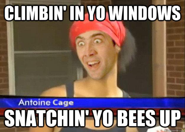 Climbin' in yo windows snatchin' yo bees up