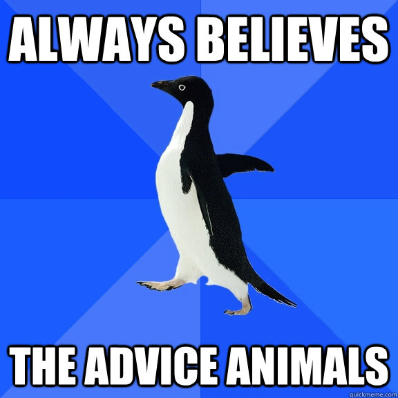 always believes the advice animals - always believes the advice animals  Socially Awkward Penguin