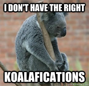 I don't have the right koalafications - I don't have the right koalafications  Misc