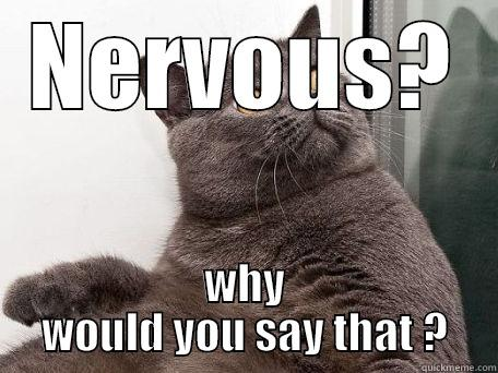 NERVOUS? WHY WOULD YOU SAY THAT ? conspiracy cat