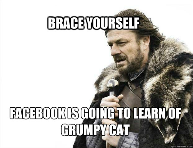 BRACE YOURSELf Facebook is going to learn of Grumpy Cat