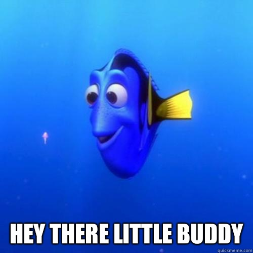 Hey there little buddy  -  Hey there little buddy   dory