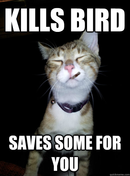 kills bird saves some for you