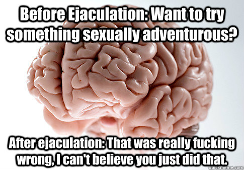 Before Ejaculation: Want to try something sexually adventurous? After ejaculation: That was really fucking wrong, I can't believe you just did that. - Before Ejaculation: Want to try something sexually adventurous? After ejaculation: That was really fucking wrong, I can't believe you just did that.  Scumbag Brain
