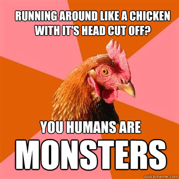 Running around like a Chicken with it's head cut off?  You humans are  MONSTERS - Running around like a Chicken with it's head cut off?  You humans are  MONSTERS  Anti-Joke Chicken