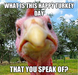 What is this happy turkey day that you speak of?