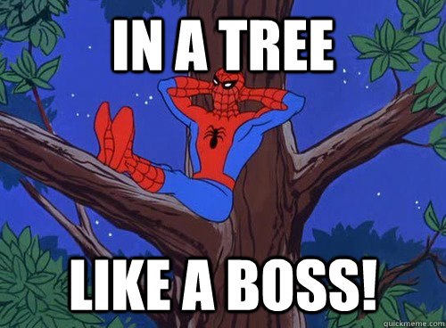 in a tree like a boss! - in a tree like a boss!  Spider man