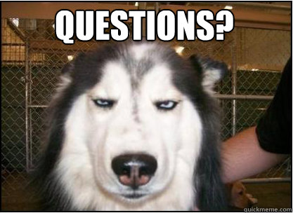 Questions? - Questions?  Skeptical Dog