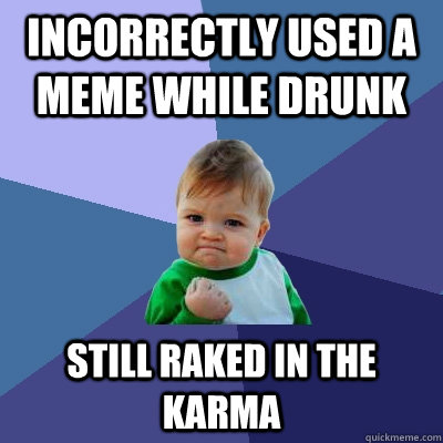 incorrectly used a meme while drunk still raked in the karma - incorrectly used a meme while drunk still raked in the karma  Success Kid