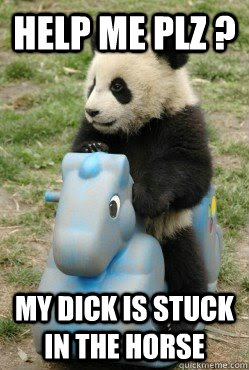 Funny cute panda memes quickmeme help me plz my dick is stuck in the horse funny cute panda voltagebd Image collections