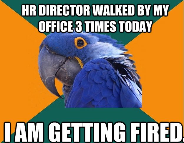 HR Director walked by my office 3 times today I am getting fired. - HR Director walked by my office 3 times today I am getting fired.  Paranoid Parrot