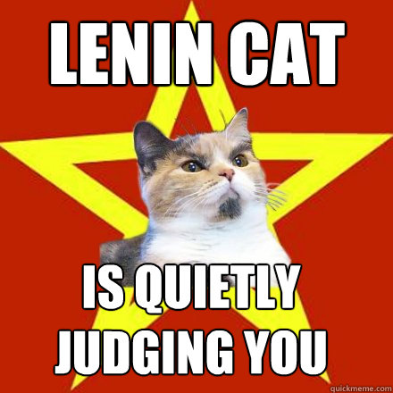 LENIN CAT is quietly  judging YOU - LENIN CAT is quietly  judging YOU  Lenin Cat