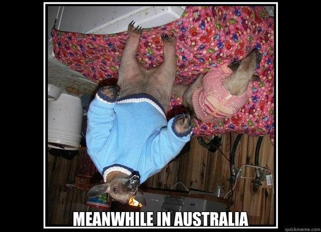 meanwhile in australia  Meanwhile in Australia