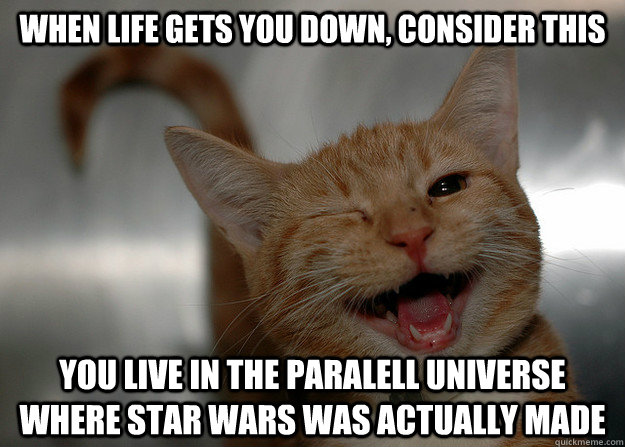 when life gets you down, consider this you live in the paralell universe where star wars was actually made