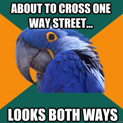 About to cross one way street... looks both ways - About to cross one way street... looks both ways  Paranoid Parrot