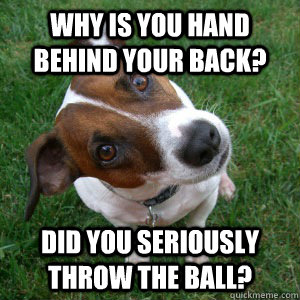 Why is you hand behind your back? Did you seriously throw the ball? - Why is you hand behind your back? Did you seriously throw the ball?  Dubious Dog