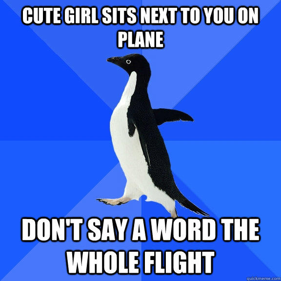 cute girl sits next to you on plane don't say a word the whole flight - cute girl sits next to you on plane don't say a word the whole flight  Socially Awkward Penguin