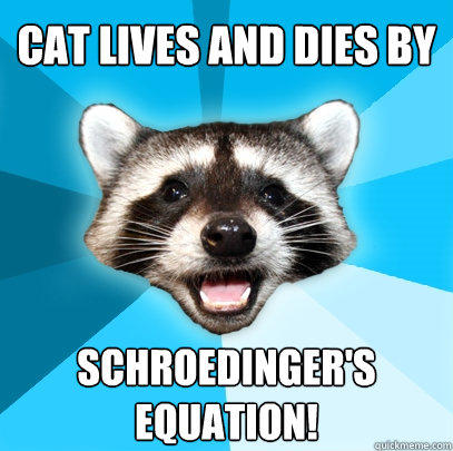 Cat lives and dies by Schroedinger's Equation! - Cat lives and dies by Schroedinger's Equation!  Lame Pun Coon