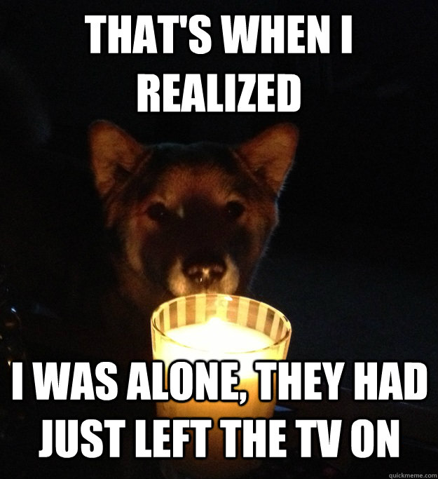 THAT'S WHEN I REALIZED I WAS ALONE, THEY HAD JUST LEFT THE TV ON