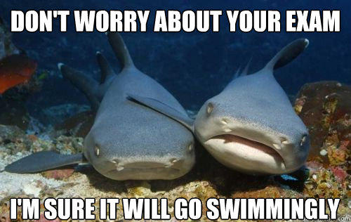 don't worry about your exam i'm sure it will go swimmingly  Compassionate Shark Friend