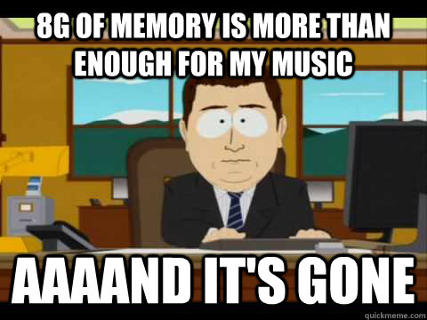 8g of memory is more than enough for my music Aaaand it's gone - 8g of memory is more than enough for my music Aaaand it's gone  Misc